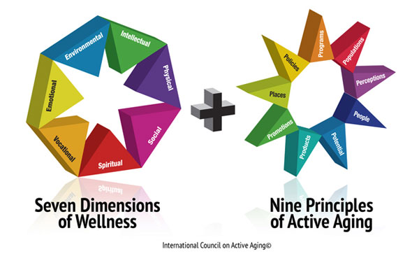 the seven dimensions of wellness