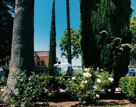 Old Towne From Two Perspectives: Two Tales of One City