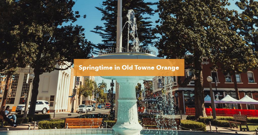 Orange Plaza park Fountain