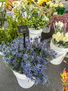 Flowers from Maldonado Growers