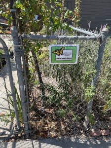 Butterfly Sanctuary on Culver Ave.